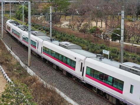 JR 常磐線 E657系 特急 ひたち16号【偕楽園 梅桜橋】