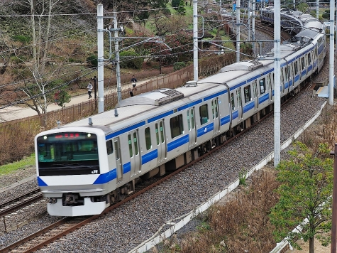 JR 常磐線 E531系 電車【偕楽園 梅桜橋】