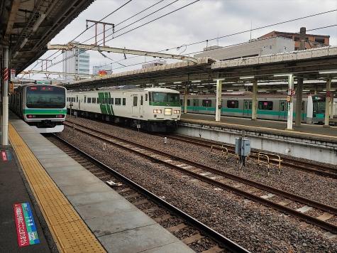 JR E231系 電車 & 185系 電車【我孫子駅】