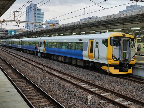 JR東日本 E257系 電車 快速「成田山初詣ぐんま号」【我孫子駅】