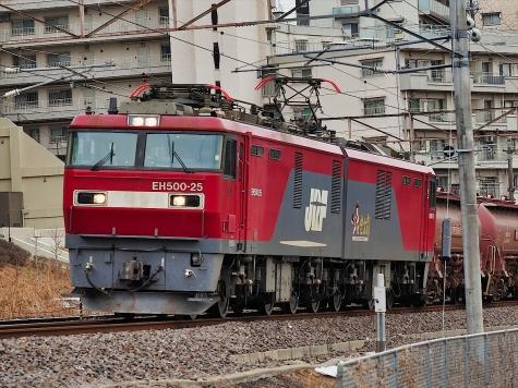 JR貨物 EH500-25 牽引の安中貨物【千波湖畔】