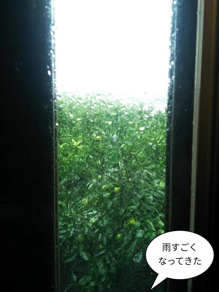 雨すごくなってきた
