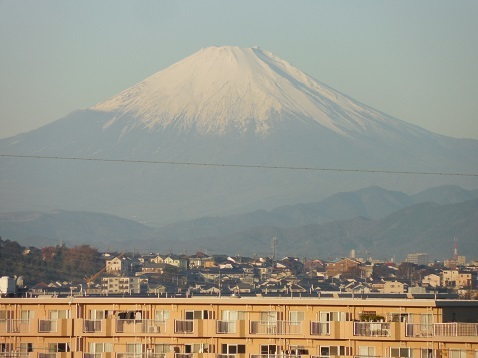 舞岡ふるさとの森から見た富士山@横浜市戸塚区c
