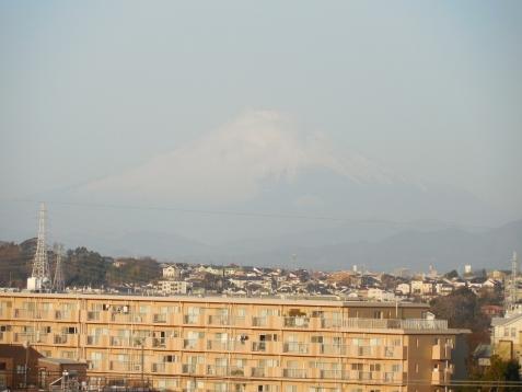 舞岡ふるさとの森から見た富士山@横浜市戸塚区b