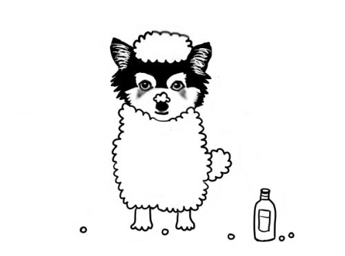 mvmbabaさん ペットの絵 ナッツ
