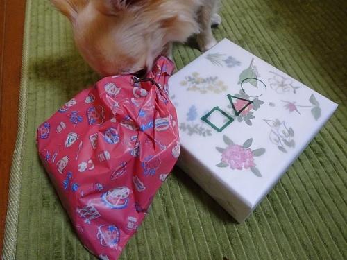 あーにゃんさんからプレゼント♪