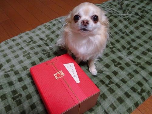 オードリーさんからプレゼント♪ 柚子