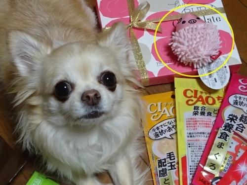 ピノホリママさんからプレゼント♪ 柚子