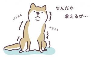 震える犬-300x189