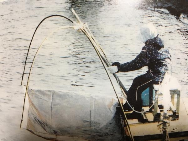 イサザ漁1