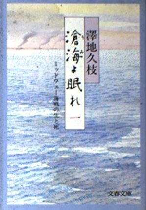 滄海よ眠れ〈1〉澤地久枝