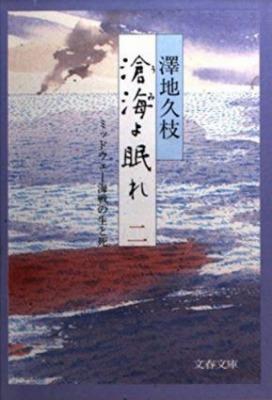 滄海よ眠れ〈2〉 澤地久枝