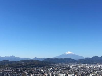 権現山展望台からの富士山