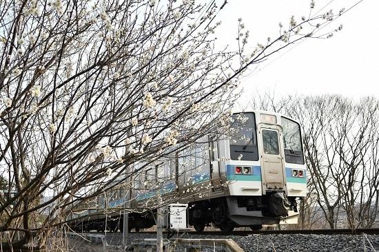 2020年3月22日撮影 飯田線 2209M 211系 赤文字「快速」
