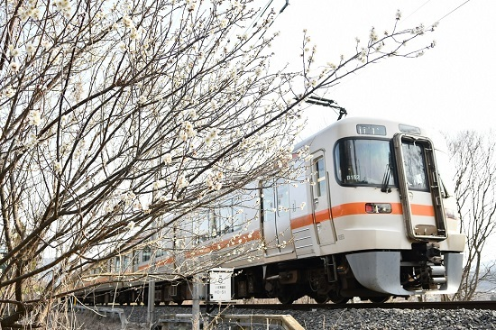 2020年3月22日撮影 飯田線 211M 313系1700番台