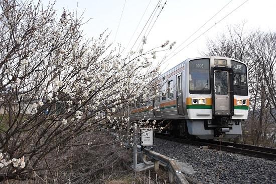2020年3月22日撮影 飯田線 206M 213系