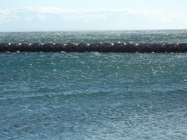 1月8日海浜3