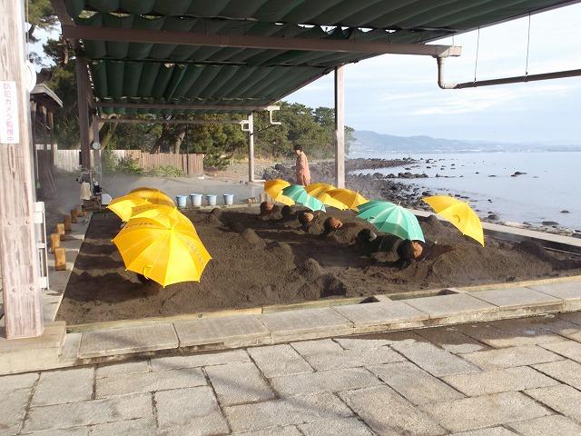 1月19日海浜2