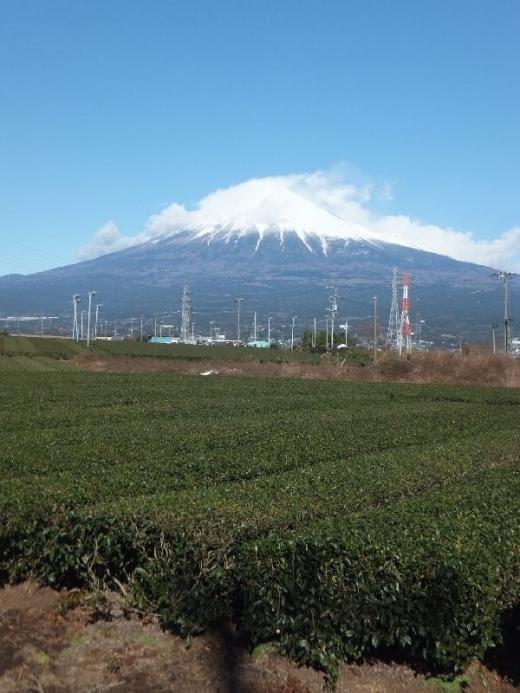 Fujisan2019_001_org.jpg