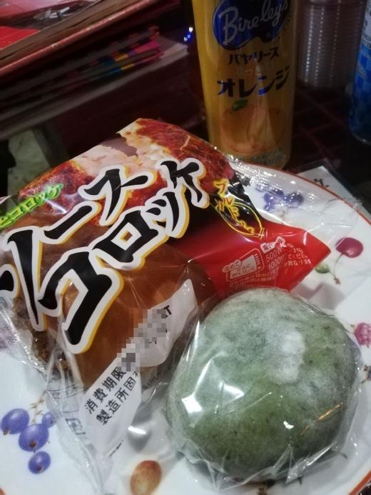Inuyama1M_010_org.jpg