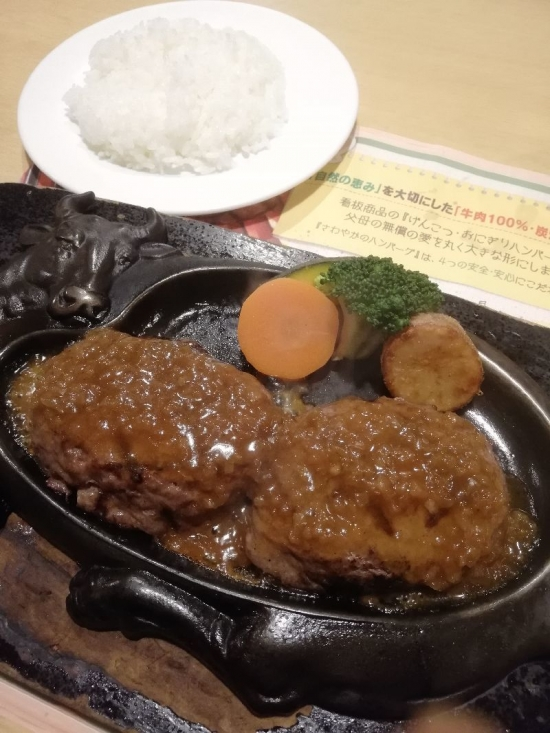 SawayakaShizuokaInter_005_org.jpg