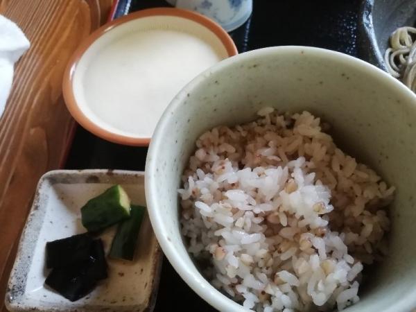 TenriKaoku_007_org.jpg