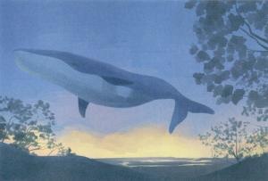 クジラ2  イラスト