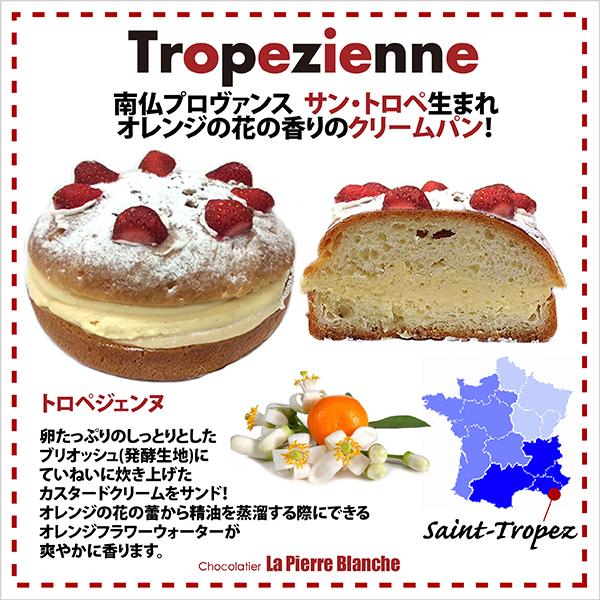 トロペジェンヌ