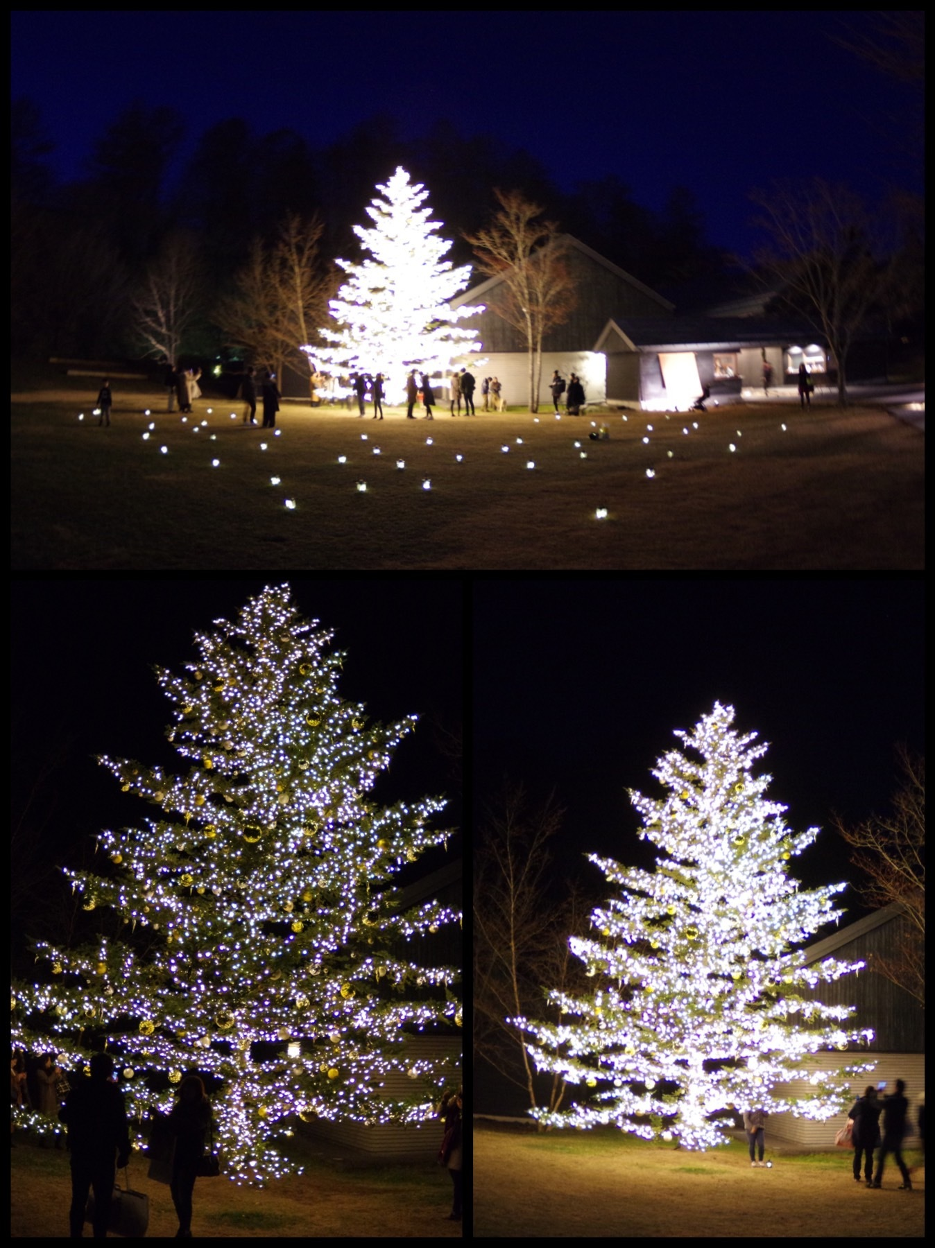 星のや軽井沢 もみの木広場 クリスマスツリー トンボの湯