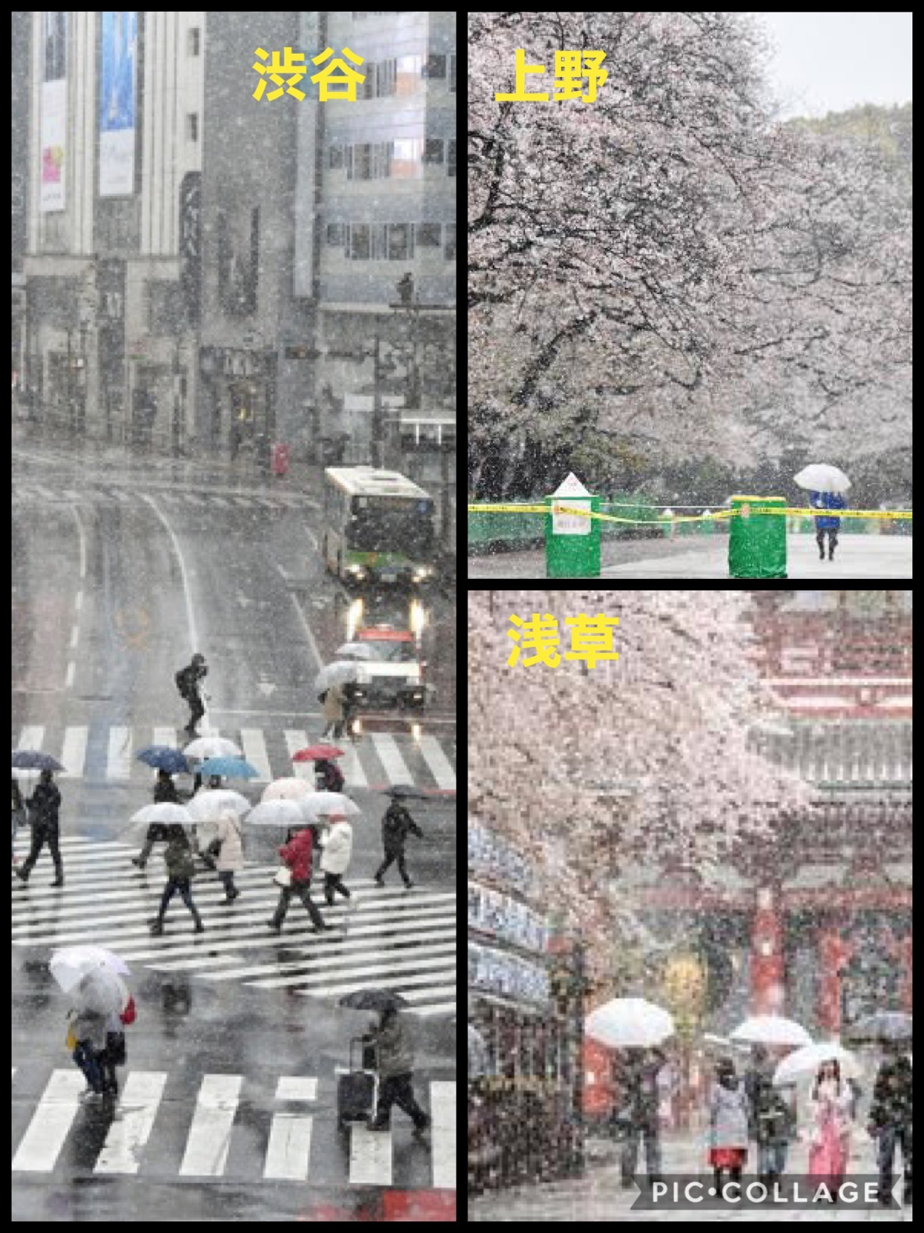 外出自粛 東京 2020年の3月