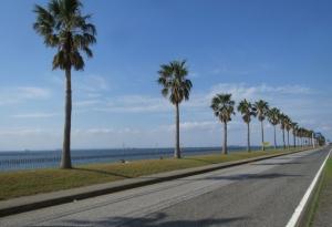 ka.海浜公園
