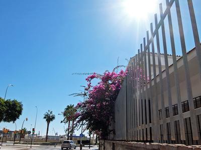 スペイン中東232マラガ街並み