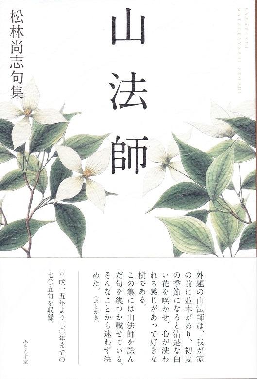 松林_NEW