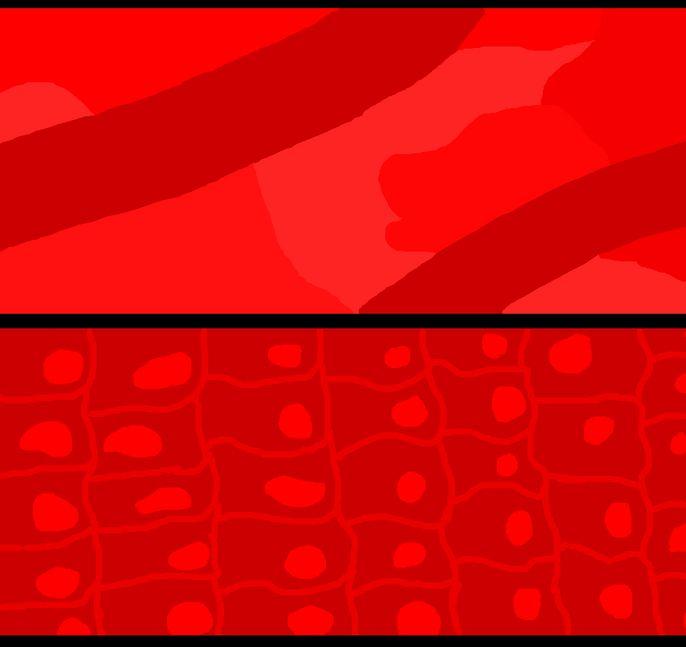 z12_20200122205200272.jpg