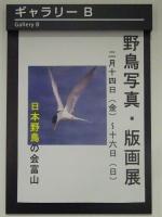 野鳥写真版画展