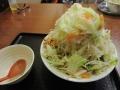 あっさり塩+富士山盛_富士タンメン