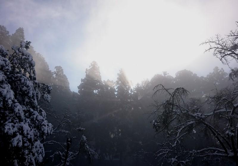 金剛山5191223