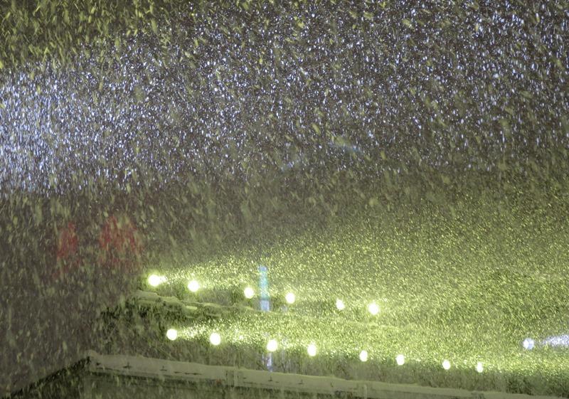 札幌雪まつり4200205