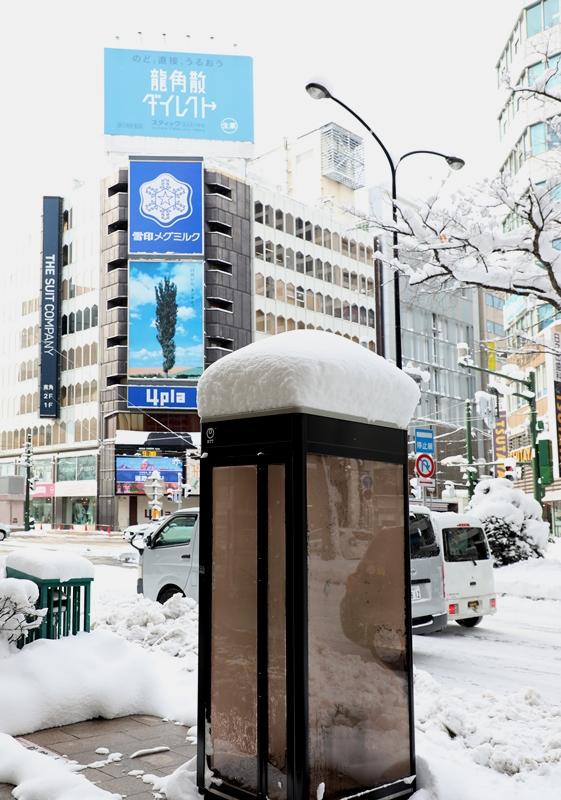 さっぽろ雪まつり12200206