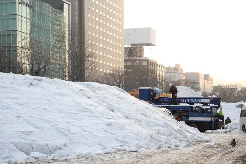 さっぽろ雪まつり8200213