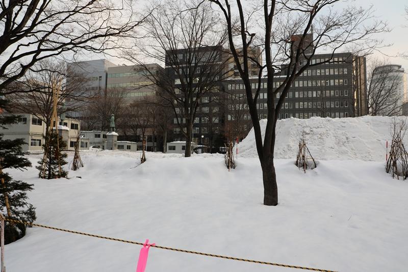 さっぽろ雪まつり14200213