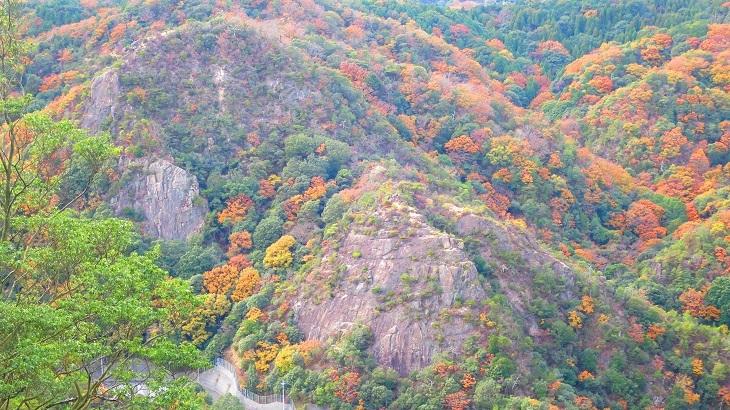 IMG_8126妙号岩