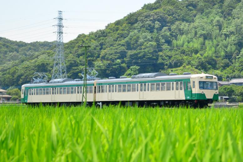 7/31 真夏の列車を撮ろう(JR・上信)