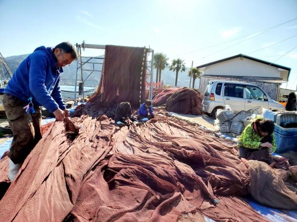 旋網漁業の漁網のメンテナンス