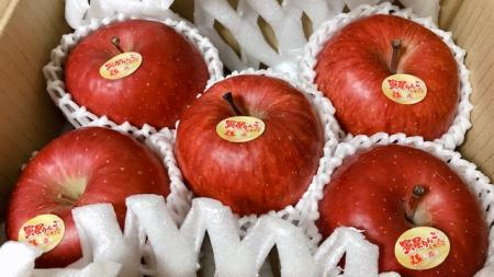 リンゴ_2020