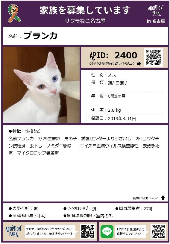 200110009.jpg