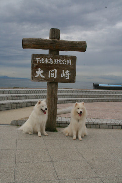blog8389.jpg