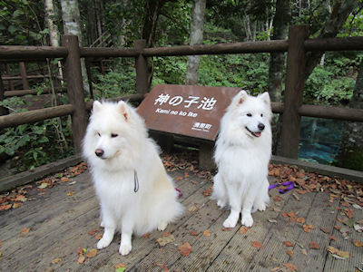 blog8462.jpg