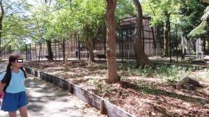 安城公園2