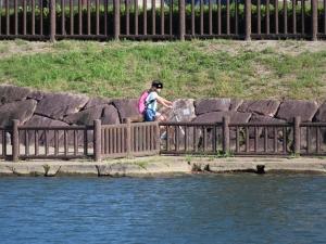 大池公園3